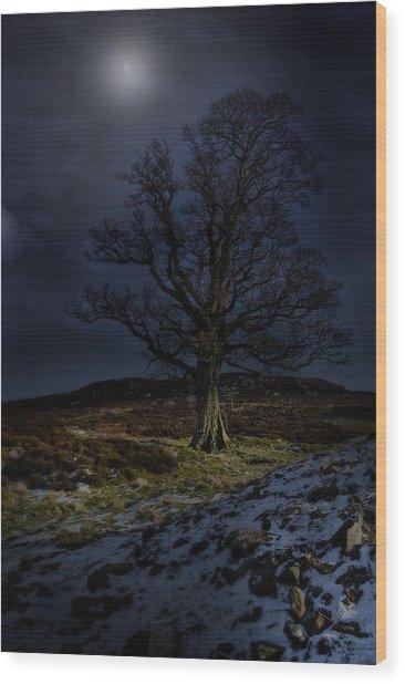 Nidderdale Tree Wood Print