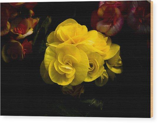 Night Begonias Four Wood Print by John Ater