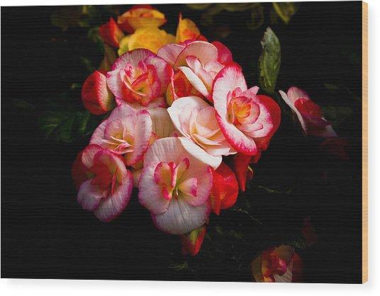 Night Begonias Three Wood Print by John Ater