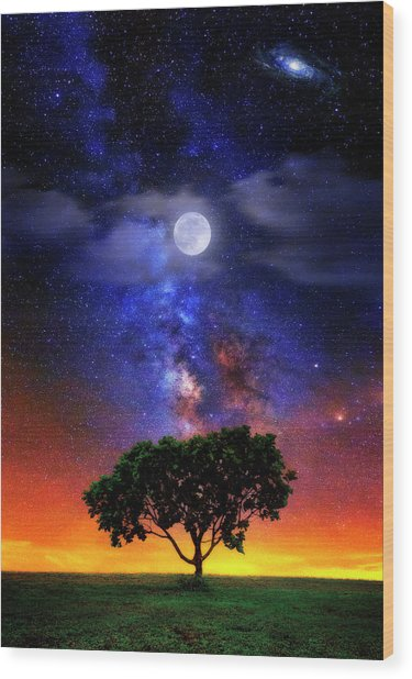 Night Colors Wood Print