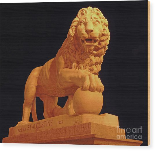 Night Of The Lion Wood Print