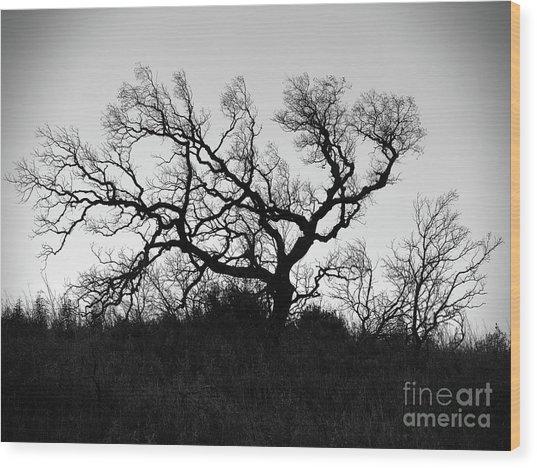 Nightmare Tree Wood Print