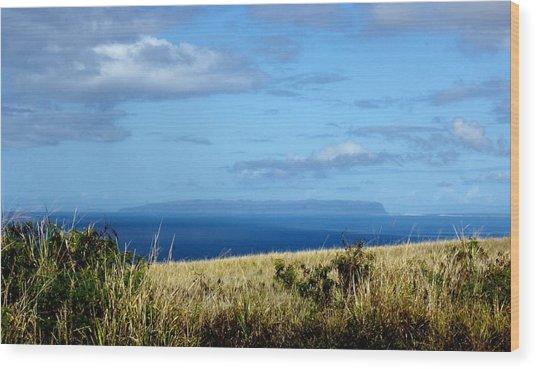 Niihau Island Wood Print by Annie Babineau