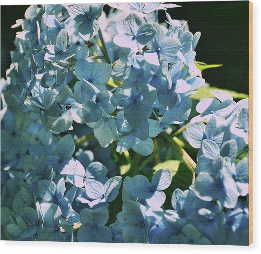 Nikko Blues Wood Print by JAMART Photography