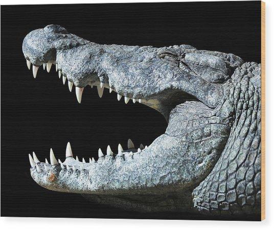 Nile Croco-smile Wood Print