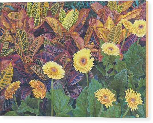 Nine Daisies Wood Print