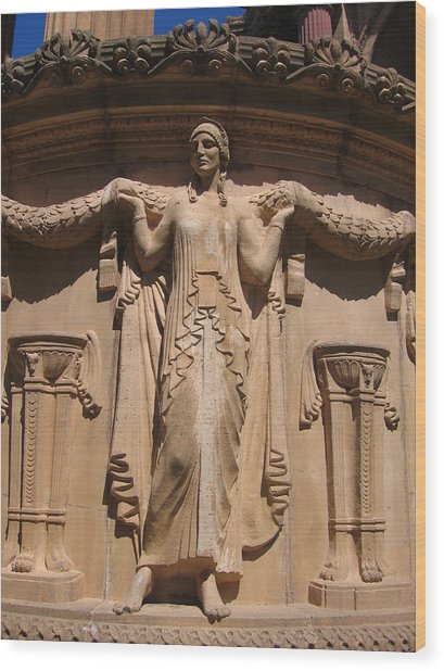 Nine-toed Maiden At The Palace Of Fine Arts In San Francisco Wood Print by Don Struke