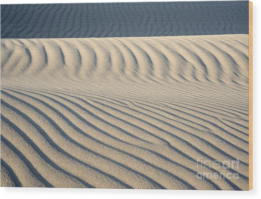 Nipomo Dunes Wood Print by Ronald Hoggard