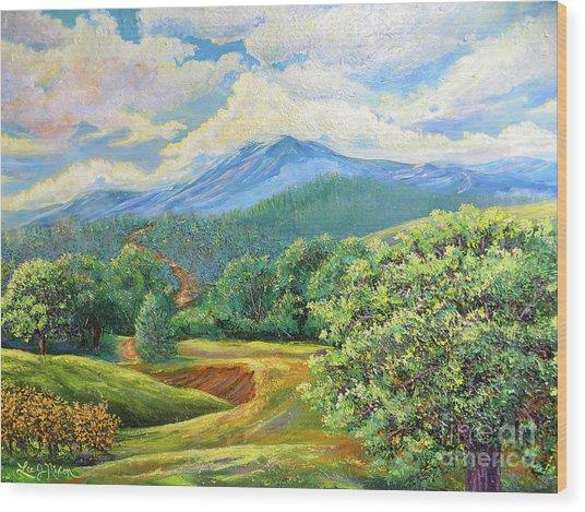 Nixon's Splendid View Of The Blue Ridge Wood Print