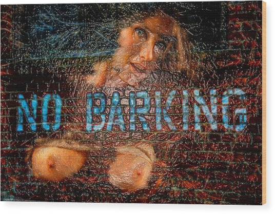 Wood Print featuring the photograph No Barking by Harry Spitz
