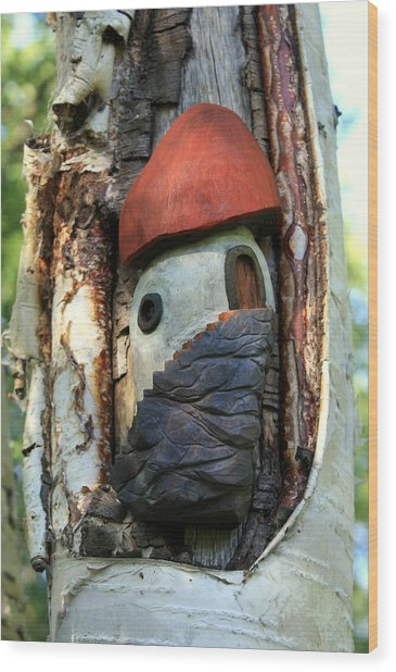 No Place Like Gnome Home Iv Wood Print by Eric Knowlton