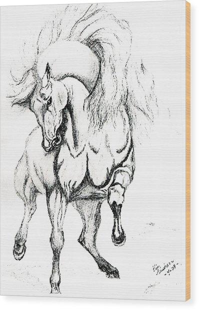 Noble Stallion Wood Print by Kim Souza