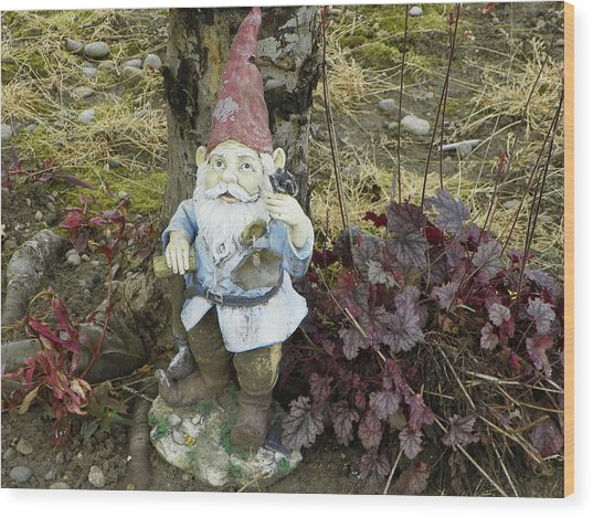 Nomebuddy Took Me...... Wood Print by Laurie Kidd
