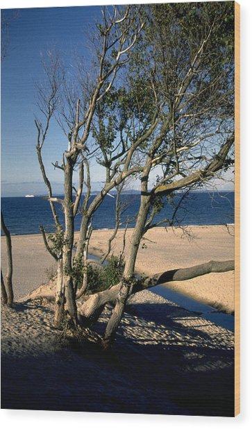 Nordic Beach Wood Print