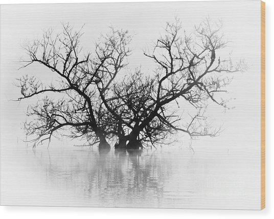 Norris Lake April 2015 5 Wood Print