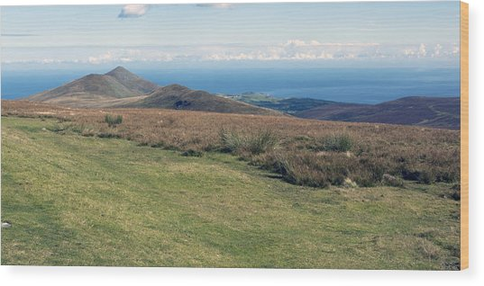 North Barrule And Maughold Head Wood Print by Steve Watson