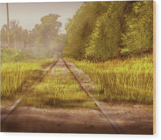 Wood Print featuring the digital art South-bound Tracks by Barry Jones