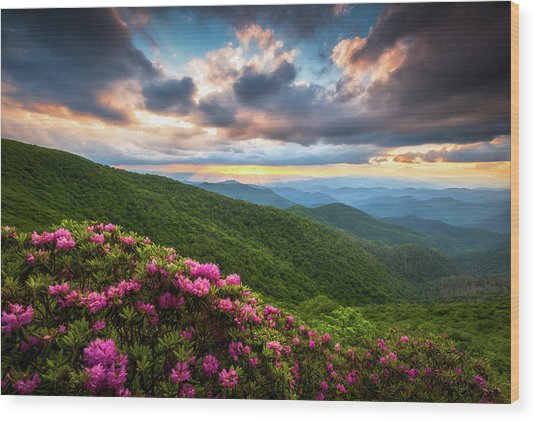 North Carolina Blue Ridge Parkway Scenic Landscape Asheville Nc Wood Print