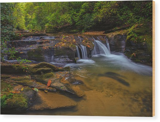 North Carolina Cascade Wood Print