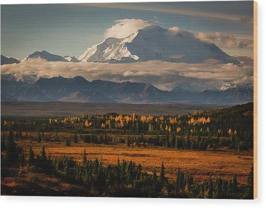 North Face Of Denali Wood Print