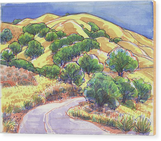 North Gate Road, Mount Diablo Wood Print