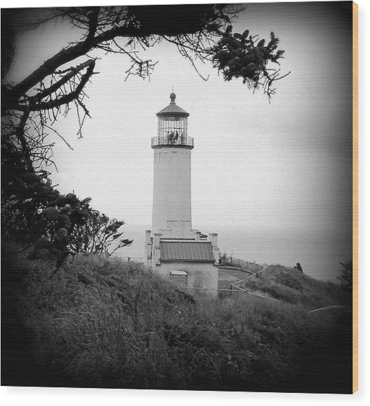 North Head Lighthouse Bw Wood Print by Mg Blackstock