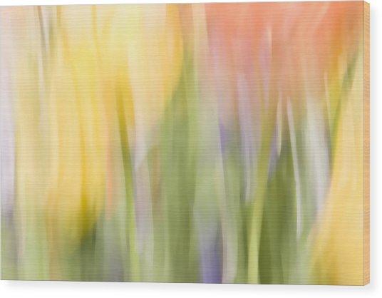 North Hills Tulips I Wood Print