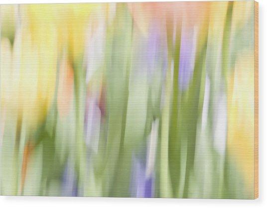 North Hills Tulips II Wood Print