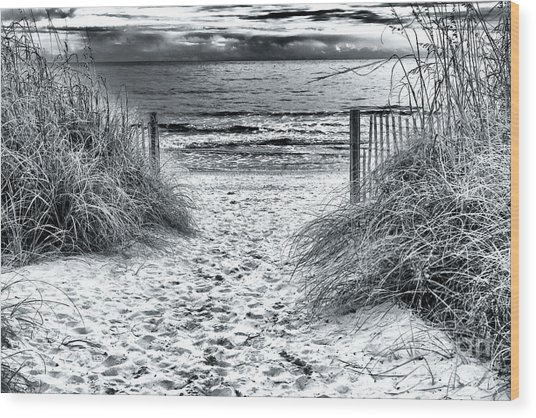 North Myrtle Beach Entry Wood Print