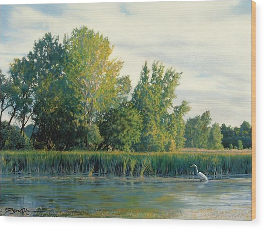 North Of The Grade-great Egret Wood Print