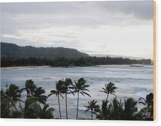 North Shore Wood Print by Thea Wolff