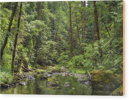 North Souixon Creek Wood Print