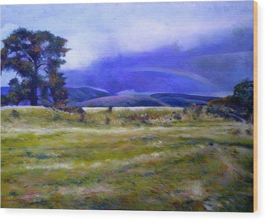 Northeast Tasmania Australia 1995  Wood Print by Enver Larney