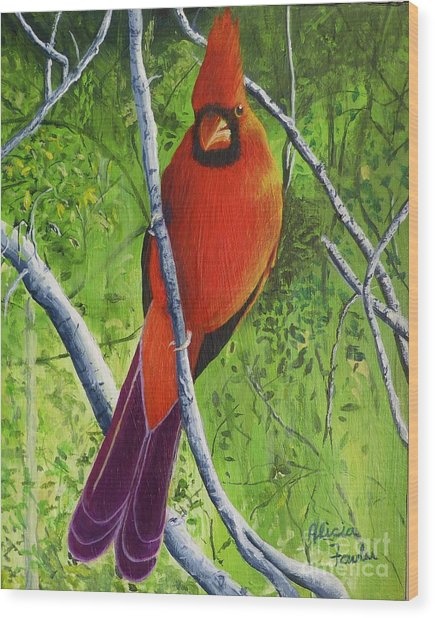 Northern Cardinal 1 Wood Print