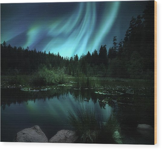 Northern Lights Over Lily Pond Wood Print