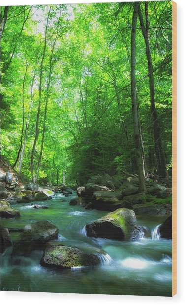 Northwood Brook Wood Print