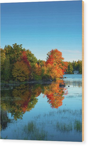 Northwood Lake Autumn Wood Print