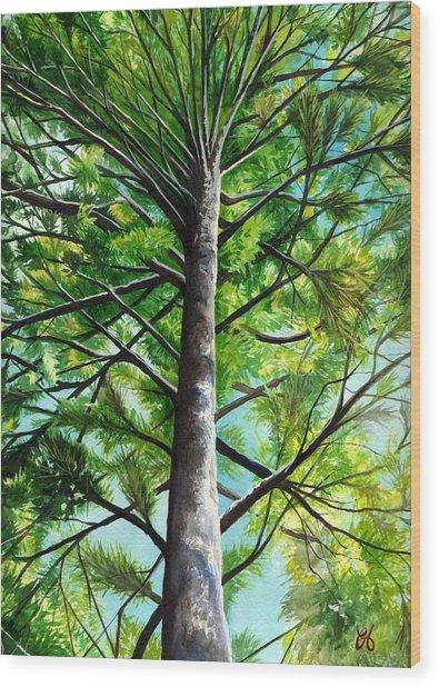 Northwoods Sky Wood Print by Carrie Auwaerter