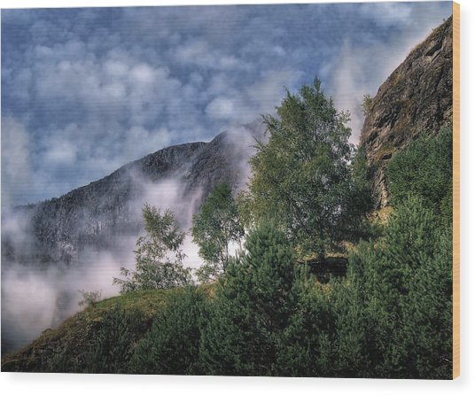 Norway Mountainside Wood Print