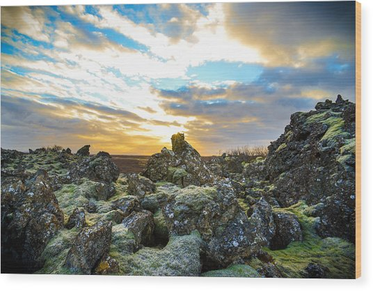 November Light Over Icelandic Lava Field Wood Print