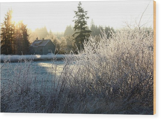 November Morning Wood Print by Barbara  White