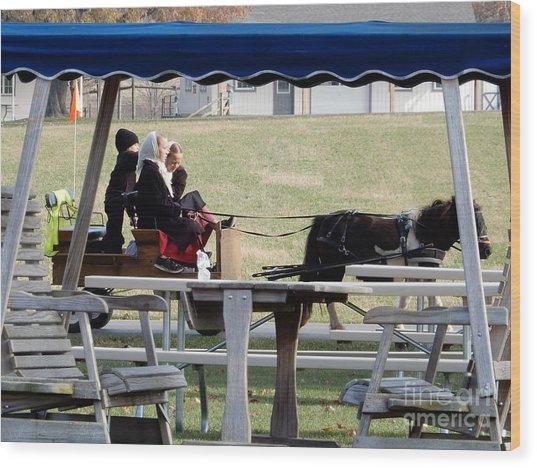 November Pony Cart Fun Wood Print