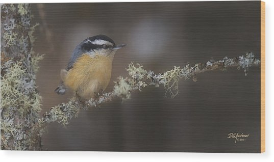 Nuts About Nuthatches Wood Print