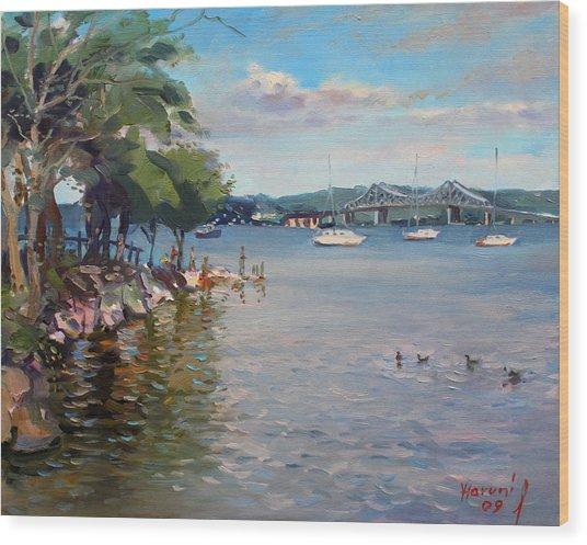 Nyack Park By Hudson River Wood Print