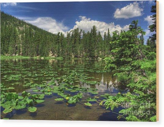 Nymph Lake Wood Print by Pete Hellmann