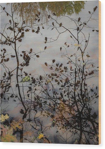 Oak Leaf Reflection At Spirit Springs Wood Print