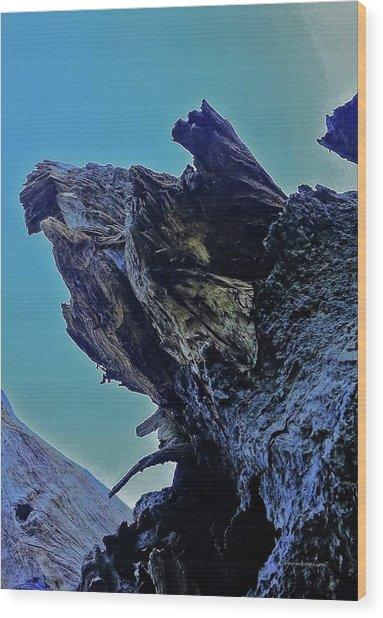 Oak Stump Wood Print