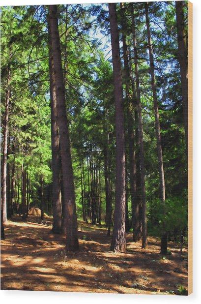 Oakrun Forest Wood Print