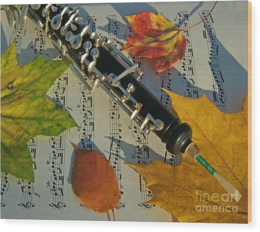Oboe And Sheet Music On Autumn Afternoon Wood Print