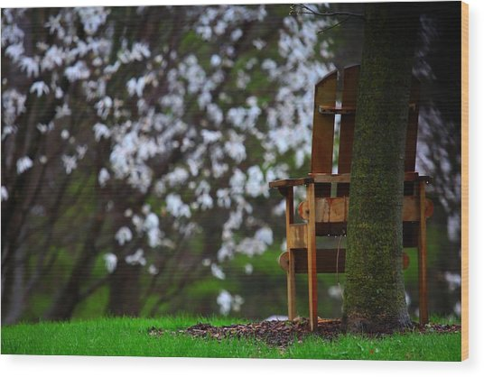 Observation Chair Wood Print by David Christiansen